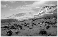 Flats and El Capitan, early morning. Guadalupe Mountains National Park, Texas, USA. (black and white)