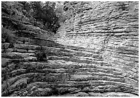 Hiker's Staircase, Pine Spring Canyon. Guadalupe Mountains National Park ( black and white)