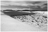 Backcountry camping area. White Sands National Park ( black and white)