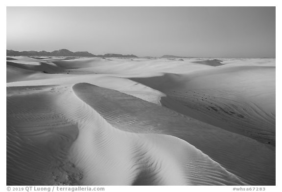 Dunes reflecting lavender colors of the sky at twilight. White Sands National Park (black and white)