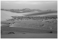 Dunes and flat depression at sunrise. White Sands National Park ( black and white)