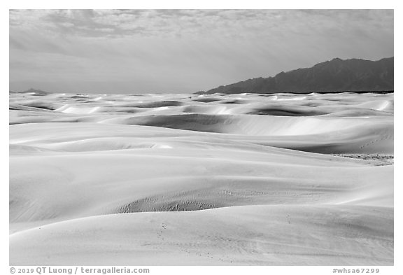Worlds largest gypsum dune field. White Sands National Park (black and white)