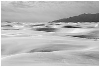 Worlds largest gypsum dune field. White Sands National Park ( black and white)