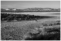Playa in winter. White Sands National Park ( black and white)