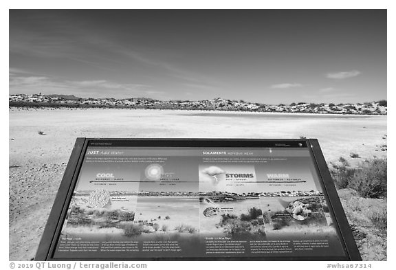 Just add water interpretive sign. White Sands National Park (black and white)