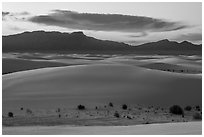 Dunes, Andres Mountains, and cloud at sunset. White Sands National Park ( black and white)