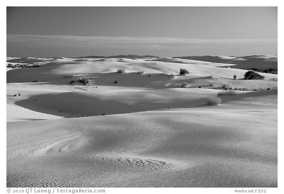 Gypsum sand dunes. White Sands National Park (black and white)