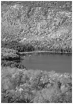 Eagle Lake, surrounded by hillsides covered with colorful trees in fall. Acadia National Park ( black and white)