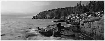 Coastal landscape, Otter Point. Acadia National Park (Panoramic black and white)