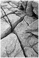 Pink granite slab with cracks. Acadia National Park ( black and white)
