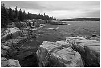 Rugged atlantic seascape near Thunder Hole. Acadia National Park ( black and white)