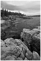 Rocky coastline near Thunder Hole. Acadia National Park ( black and white)