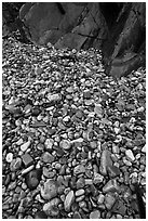 Pebbles and rock slabs. Acadia National Park ( black and white)
