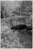 Stone bridge over stream. Acadia National Park ( black and white)
