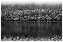 Trees in fall colors reflected in Jordan Pond. Acadia National Park ( black and white)