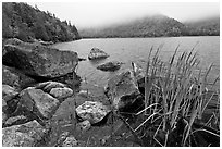 Jordan pond shore in a fall misty day. Acadia National Park ( black and white)