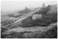Summit of Cadillac Mountain during heavy fog. Acadia National Park ( black and white)