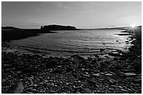 Cove and Pond Island, sunset, Schoodic Peninsula. Acadia National Park ( black and white)