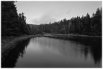 Pond and trees, Schoodic Peninsula. Acadia National Park ( black and white)