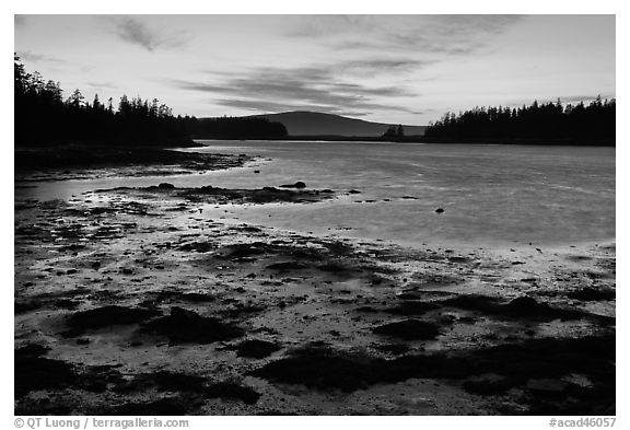West Pond, sunset, Schoodic Peninsula. Acadia National Park (black and white)