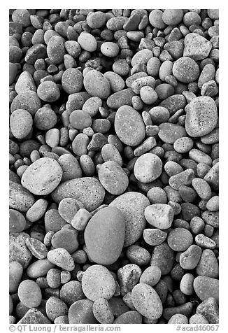 Close-up of smooth pebbles, Schoodic Peninsula. Acadia National Park (black and white)