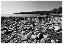 Stream on Barred Harbor beach, Isle Au Haut. Acadia National Park ( black and white)