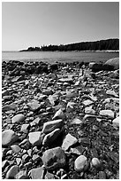 Streams flows into cove, Isle Au Haut. Acadia National Park ( black and white)