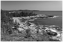 Isle Au Haut shoreline. Acadia National Park ( black and white)