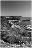 Rocky coastline, Isle Au Haut. Acadia National Park ( black and white)