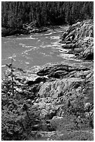 Squeaker Cove from above, Isle Au Haut. Acadia National Park ( black and white)