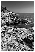 Rocky ocean shoreline, Isle Au Haut. Acadia National Park ( black and white)