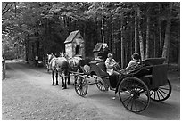 Horse carriage. Acadia National Park ( black and white)