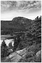 Tidal creek and Behive. Acadia National Park ( black and white)