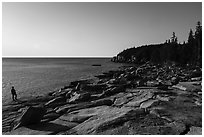 Visitor looking, near Otter Point. Acadia National Park ( black and white)