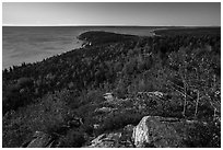 Coast and woods from Gorham Mountain. Acadia National Park ( black and white)