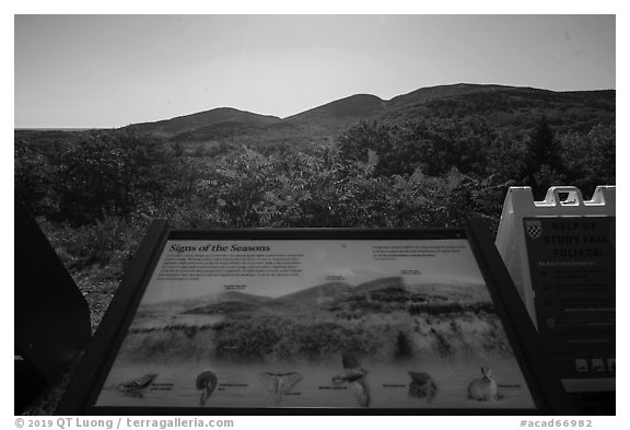 Signs of the Seasons interpretive sign. Acadia National Park (black and white)