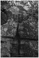 Iron rungs, Precipice Trail. Acadia National Park ( black and white)