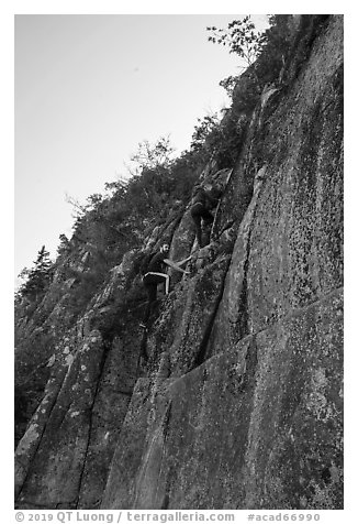 Hikers on vertical section of Precipice Trail. Acadia National Park (black and white)