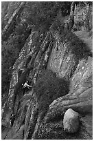 Hikers scaling cliff with iron rungs. Acadia National Park ( black and white)
