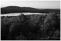 Trees and Eagle Lake, sunset. Acadia National Park ( black and white)