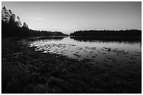 West Pond at sunrise, Schoodic Peninsula. Acadia National Park ( black and white)