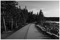 Road, Schoodic Peninsula. Acadia National Park ( black and white)