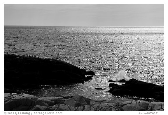 Shimmering ocean from Little Moose Island. Acadia National Park (black and white)