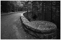 Carriage road over Hemlock Bridge. Acadia National Park ( black and white)