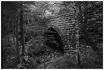 Hemlock Bridge. Acadia National Park ( black and white)