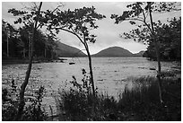 Eagle Lake on cloudy day. Acadia National Park ( black and white)