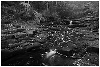 Duck Brook cascades and autumn foliage. Acadia National Park ( black and white)