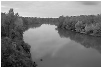 Congaree River at sunset. Congaree National Park ( black and white)