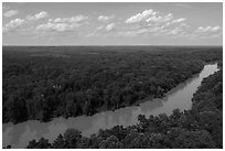 Aerial view of Congaree River. Congaree National Park ( black and white)