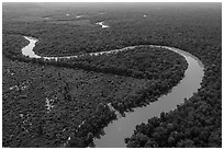 Aerial view of bends of the Congaree River. Congaree National Park ( black and white)